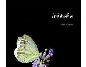 uno dei migliori libri di fotografia naturalistica